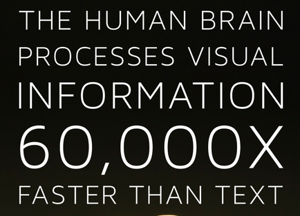 the-human-brain-process-visual-information