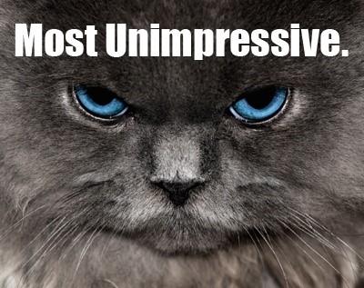 unimpressed-visitors